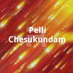 Pelli Chesukundam