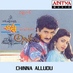 Chinna Alludu