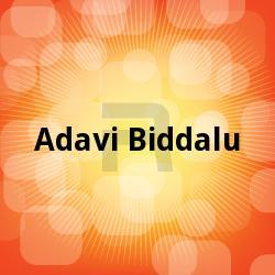 Adavi Biddalu