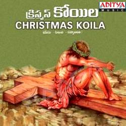 Christmas Koila