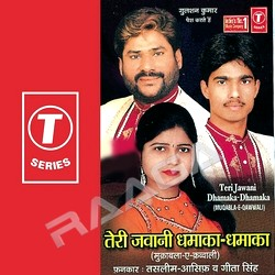 Teri Jawani Dhamakadhamaka