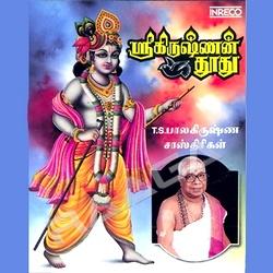 Shri Krishna Thoothu