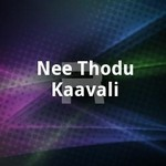 Nee Thodu Kaavali