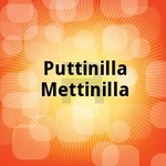puttinilla mettinilla