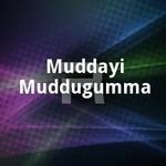 Muddayi Muddugumma