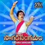 Saagara Sangamam