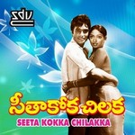Seethakoka Chiluka