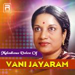 Melodious Voice Of Vani Jayaram
