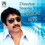 Director Sreenu Vaitla Musical Hits