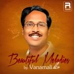 Beautiful Melodies By Vanamali