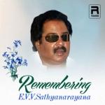 Remembering Evv Garu