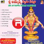 sri ayyappa swami sannidhi