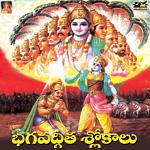 bhagawadh geetha (slokas) - vol 1