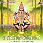Irumudi Shrimanda