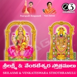 sri lakshmi and venkateswar...