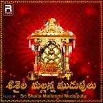 Sri Saila Mallanna Mudupulu