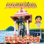 Sri Krishna Pushkarala Charitra