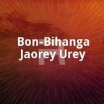 Bon-Bihanga Jaorey Urey