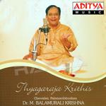 thyagaraja krithis - vol 1