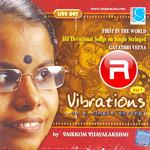 Vibrations Vol - 1