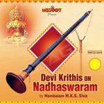 Devi Krithis On Nadhaswaram