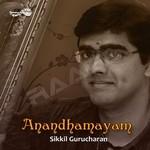 Anandhamayam