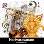 harivarasanam - various ins...