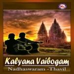 kalyana vaibogham (ambient)