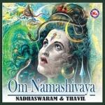 om namashivaya (ambient)