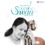 Sound Of Swan