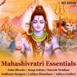 Mahashivratri Essentials