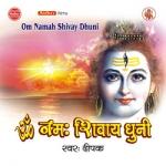 Om Namah Shivay Dhuni