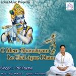 O Mere Ghanshyam Le Chal Apne Dham