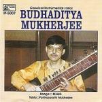 classical instrumental sitar - 4