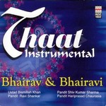 Thaat Instrumental - Bhairav & Bhairavi