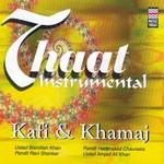 Thaat Instrumental - Kafi & Khamaj