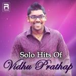 Solo Hits Of Vidhu Prathap