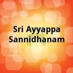 sri ayyappa sannidhanam