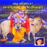 krishnaa kaarunya sindho