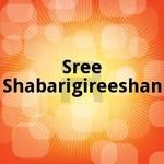 sree shabarigireeshan
