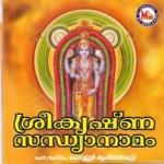 sree krishna sandhyanamam