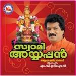 swami ayyappann