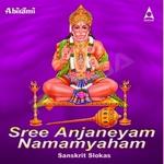 Sree Anjaneyam Namamyaham