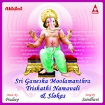 sri ganesha moolamanthra namavali and slokas