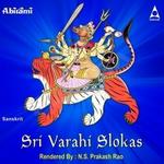 Sri Varahi Slokas