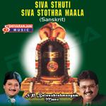 Siva Stuthi - Siva Stothra Maala