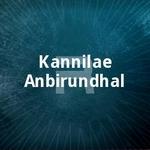 kannilae anbirundhal