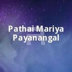 Pathai Mariya Payanangal