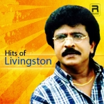Hits Of Livingston