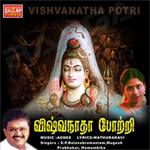 viswanatha potri